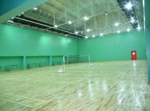 badminton-inner