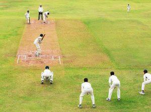 cricket-inner